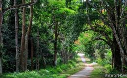 Cuc Phuong Nationa Park 01 Day