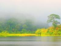 Randonnée dans le parc national Nam Cat Tien