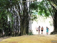 Hanoi – Tan Mai – Rivière Da - Ba Khan – Mai Chau - Option 2- En Hiver