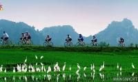 Hoa Lu - Tam Coc 01 Jour