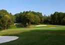 Gofl à King'sland Golf 1 jour