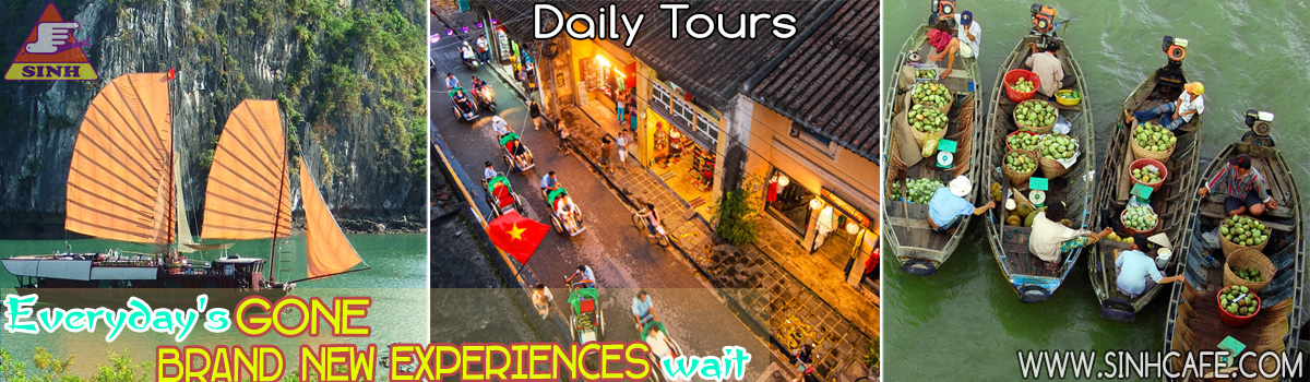Daily Tours 1200x350