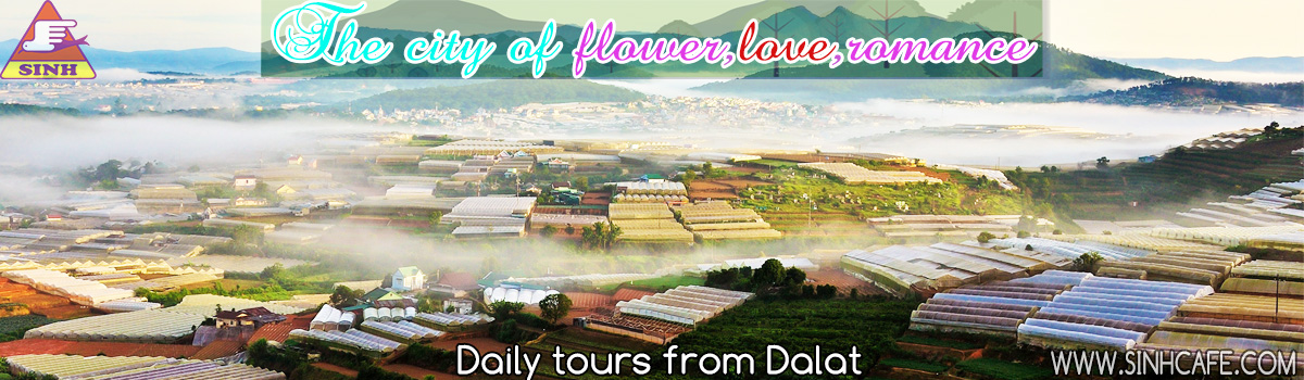 daily tours from dalat 1200x350