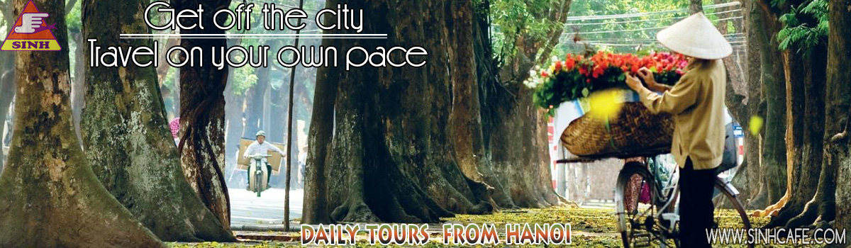 daily tours from hanoi 1200x350